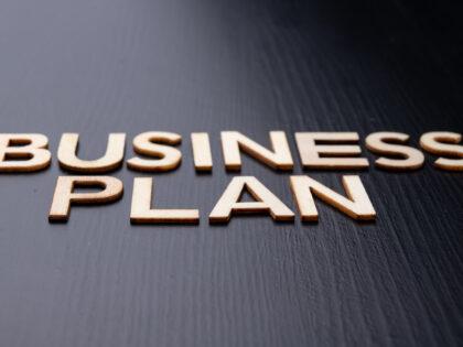 LA PIANIFICAZIONE ED IL BUSINESS PLAN